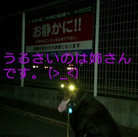 Oekaki_0004